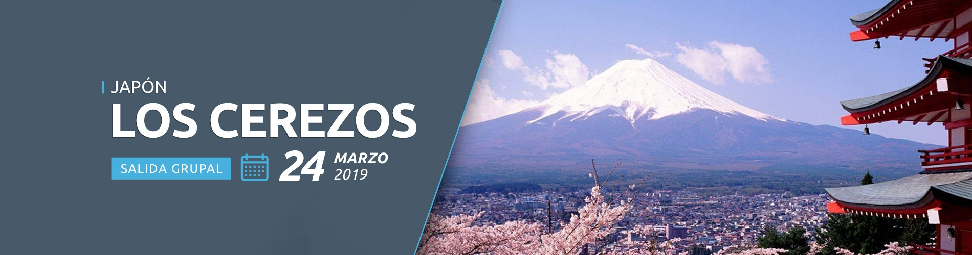 Salida Grupal 24 de marzo 2020 - Destino Los cerezos en Japón