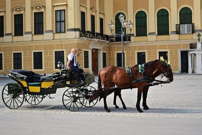 ALEMANIA, AUSTRIA Y CIUDADES IMPERIALES