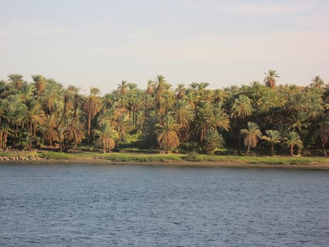 JORDANIA - ISRAEL - CAIRO